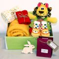 Lion Themed Baby Gift Hamper
